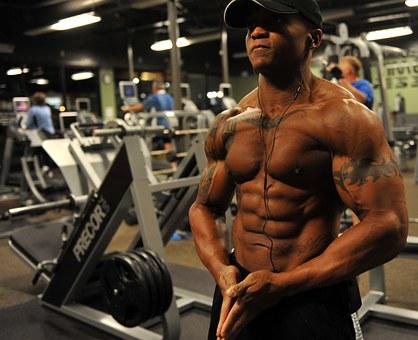 bodybuilder-646506__340